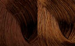 MarronsChocolate